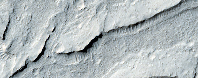 Cratered Dunes and Yardangs in the Medusae Fossae Formation