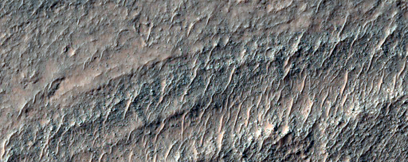 Large Clay and Chloride Exposure in Southeast Sirenum Fossae Region