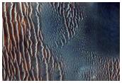 Proctor Crater Dune Margin Changes