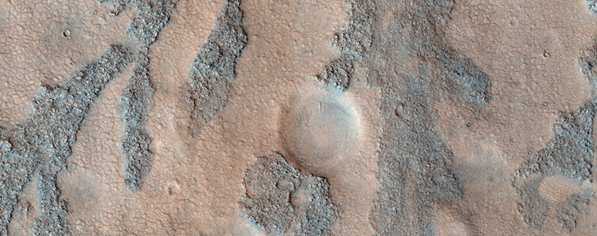 Branched Features on the Floor of Antoniadi Crater