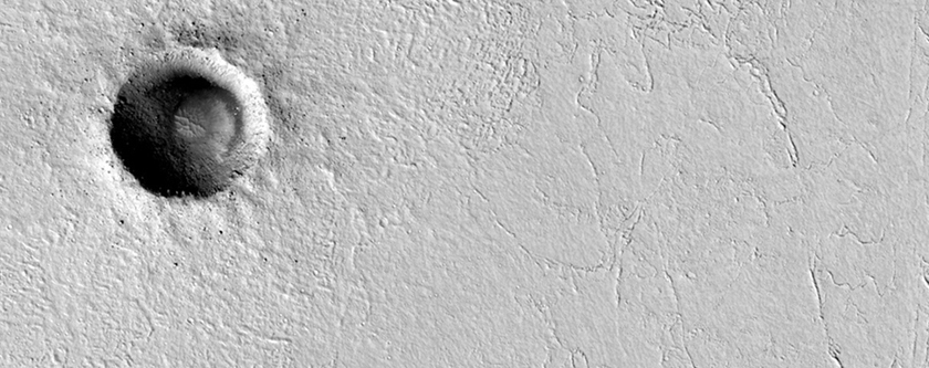 Small Impact Crater in Cerberus Palus