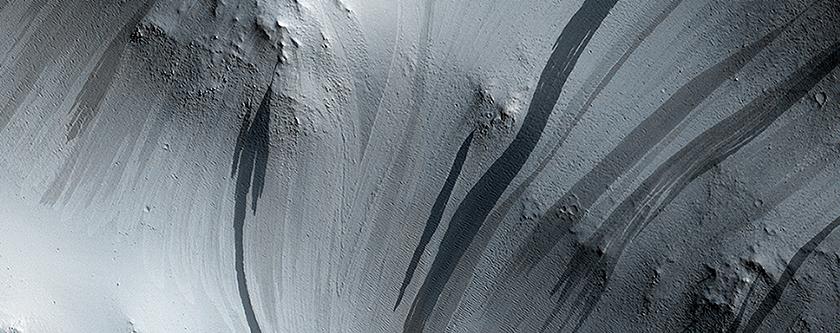 Bright and Dark Slope Streaks in Arabia Terra