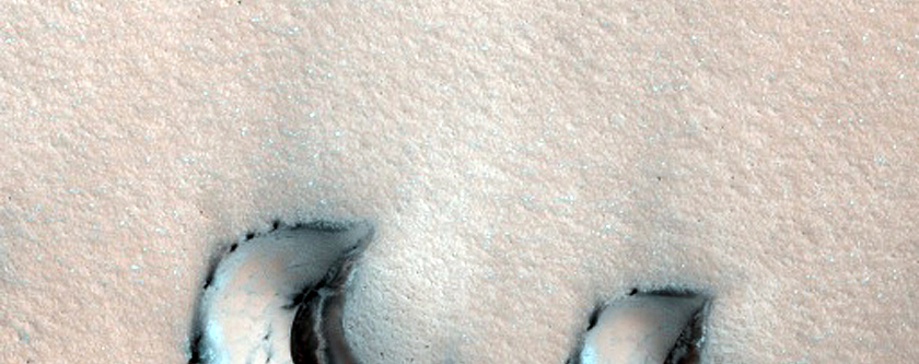 Barchan Dunes with Possible Gullies