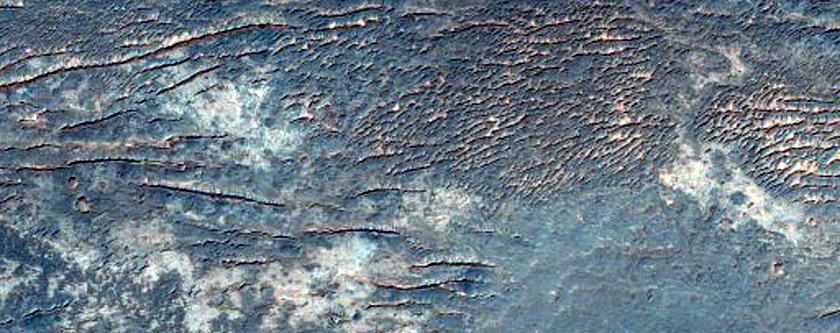 Light-Toned Layering along Plains South of Melas Region