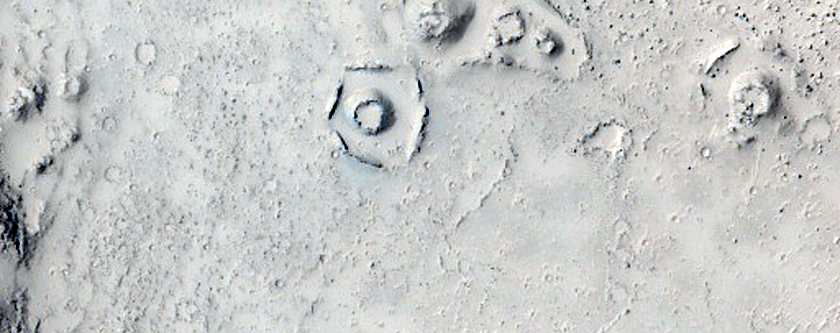 Ring and Cone Structures in Elysium Planitia