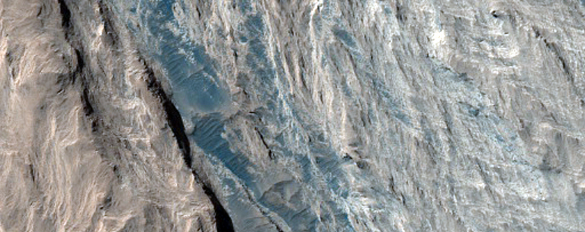 Monitor Weather and Albedo Change at Curiosity Field Site in Gale Crater