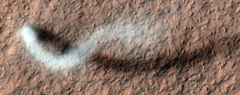 Un imponente remolino de polvo da forma a una sombra con aspecto de serpentina sobre la superficie de Marte, a finales de la primavera en esta impresionante imagen de Amazonis Planitia.