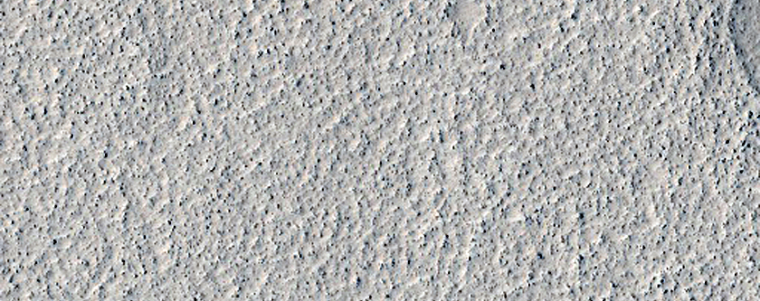 Boulder Field in Utopia Planitia