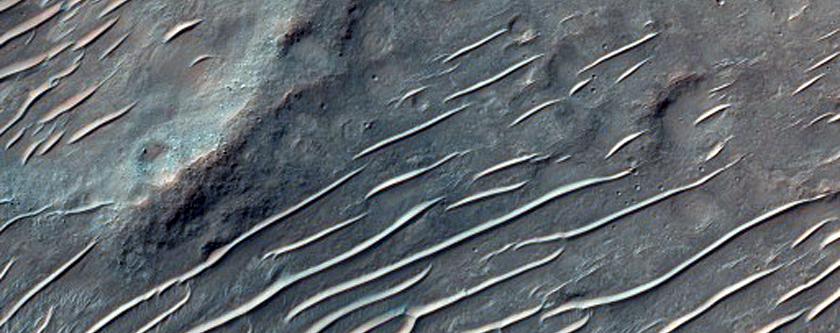 Distal Valley Regions on Northern Slope of Tyrrhenus Mons