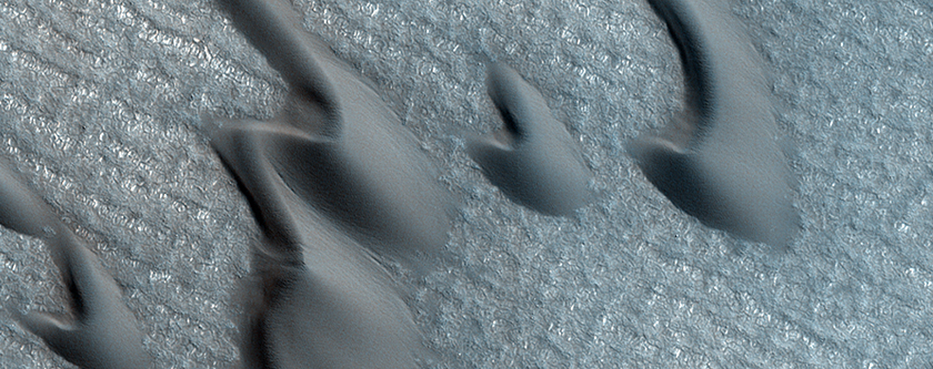 Active Sand Abrasion in the Northern Polar Region of Mars
