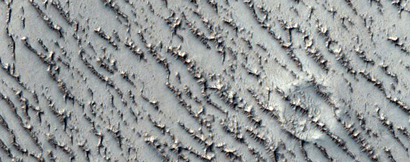 Field of Transverse Aeolian Ridges with Superposed Impact Craters