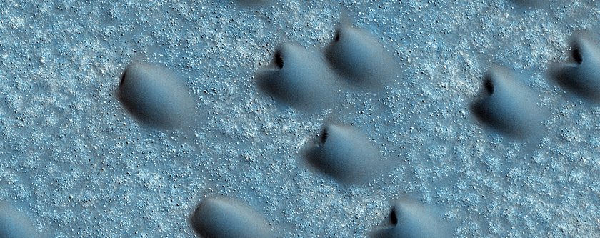 Northern Polar Dune Field