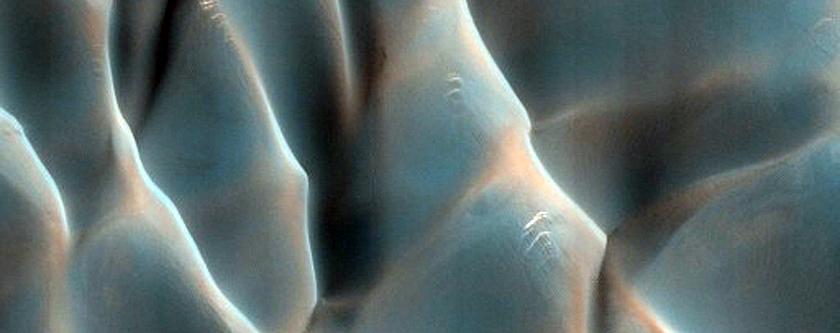 Dune Migration