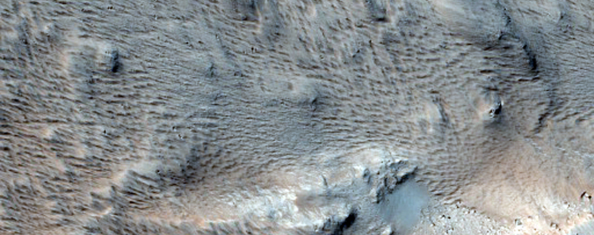 Flow Margin Visible in Viking Image 731A38