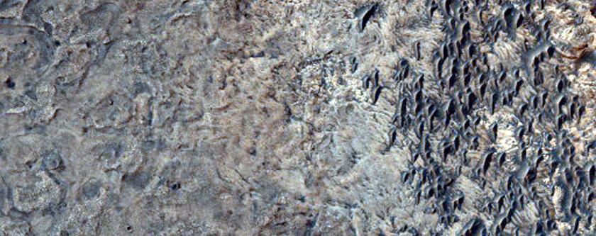 Possible Kieserite in Central Meridiani Planum