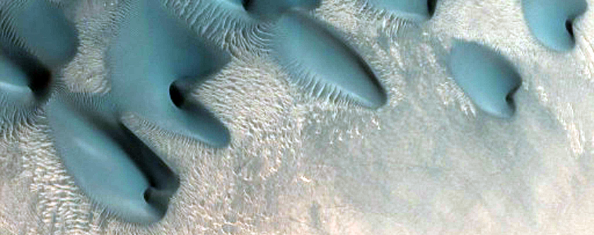 Barchan Dunes in Mamers Valles Crater