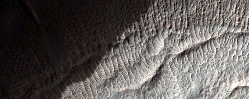 Ridges and Mesa in Crater Near Newton Crater