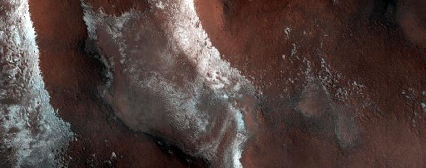 Polar Terrain