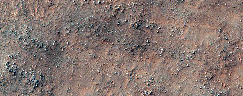 Possible Inverted Channels Near Argyre Region