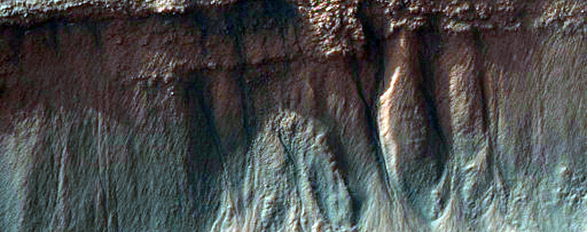 Gullies and Layers in a Trough Near Mariner Crater
