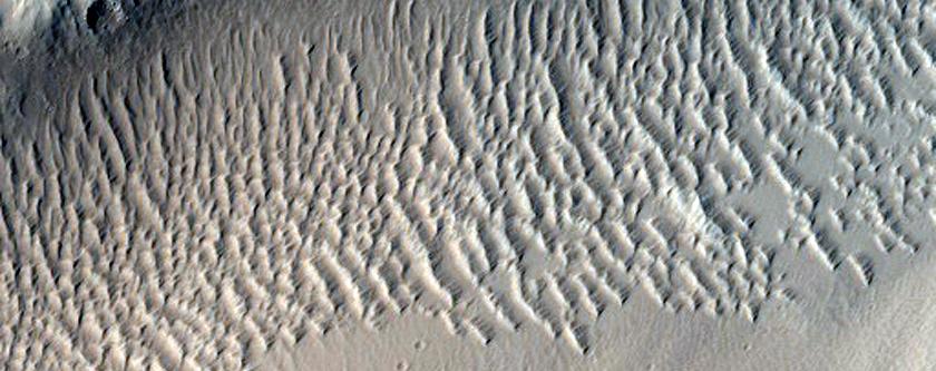 Fossae Across Plain West of Echus Chasma