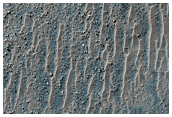 Field of Transverse Aeolian Ridges in Proctor Crater