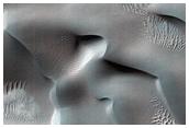 Dune Composition