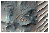 Gullies and Possible Flow Features