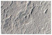 Rings in Schiaparelli Basin