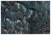 Floor of Toro Crater