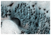 Well-Speckled Polar Dunes