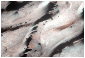 North Polar Dunes Change Detection