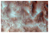 Light-Toned Material and Dark Dunes and Gullies