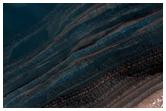 Bedform Migration Near Chasma Boreale