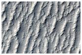 Possible Future Landing Site in Schiaparelli Crater