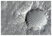Sand Ripples at a Potential Landing Site