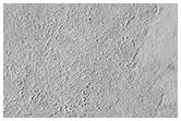 Hraunjaðar á Elysium Planitia
