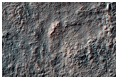 Valley Networks on Rim of Newton Crater