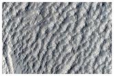 Rings in Schiaparelli Crater