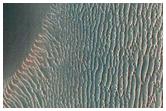 Proctor Crater Dune Changes