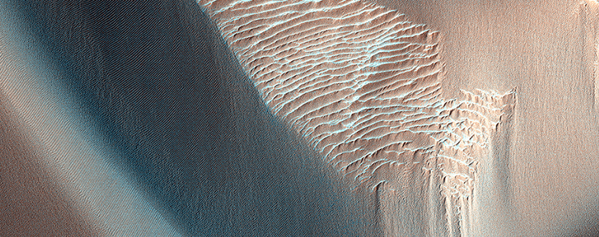 Olivine-Bearing Dune Fields and Wall Rock in Coprates Chasma