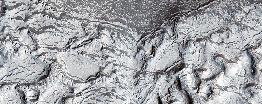 Textured Crater Floor in the Arabia Region