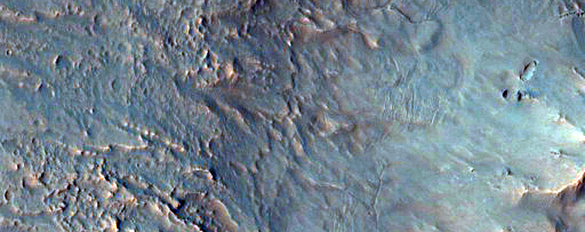Light-Toned Gully Deposits in Hale Crater
