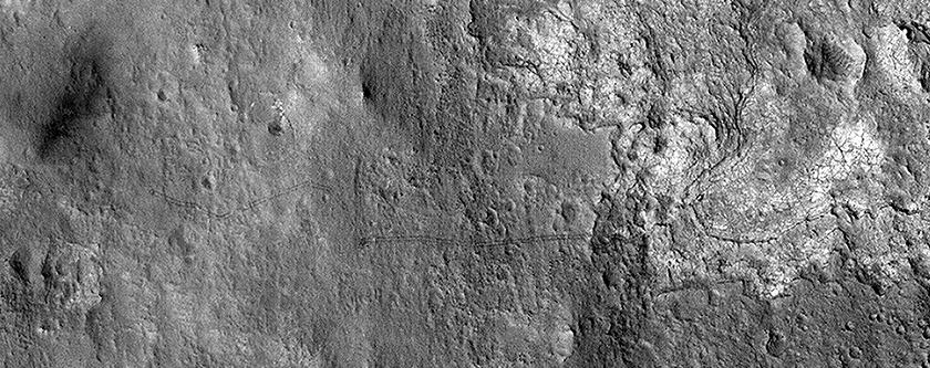 The Tracks of Curiosity