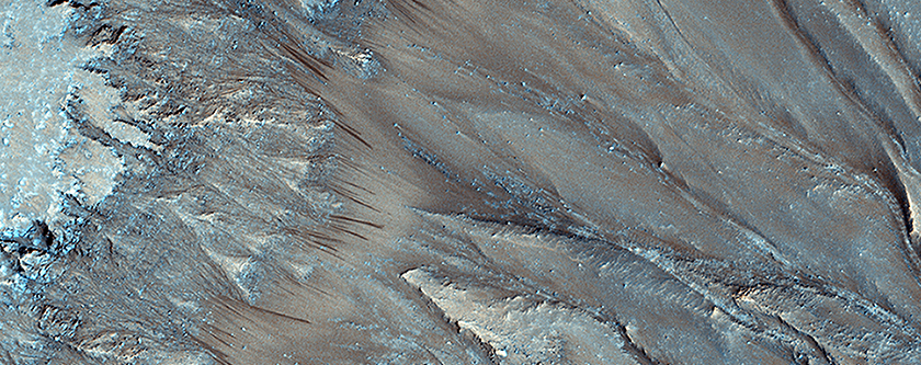 Seasonal Flows in Palikir Crater