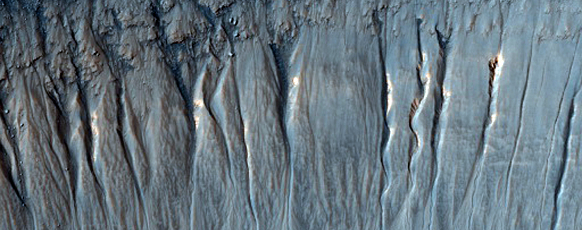 Gullies Possibly Higher Than Surrounding Land Near Mariner Crater