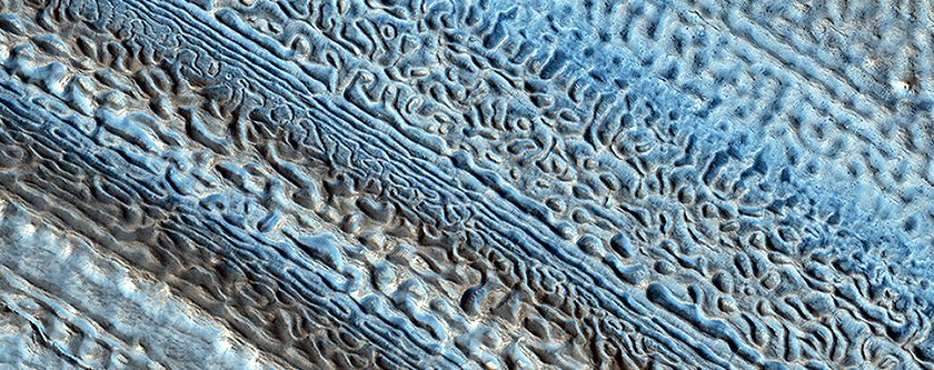 Martian Glaciers and Brain Terrain