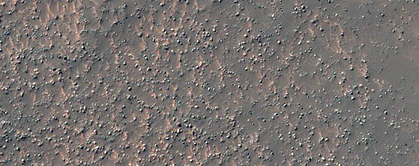Complex Dunes in Thaumasia Region