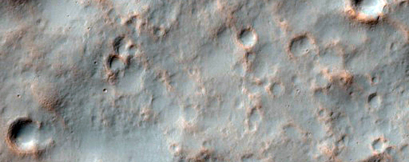Gullies at Different Levels North of Newton Crater