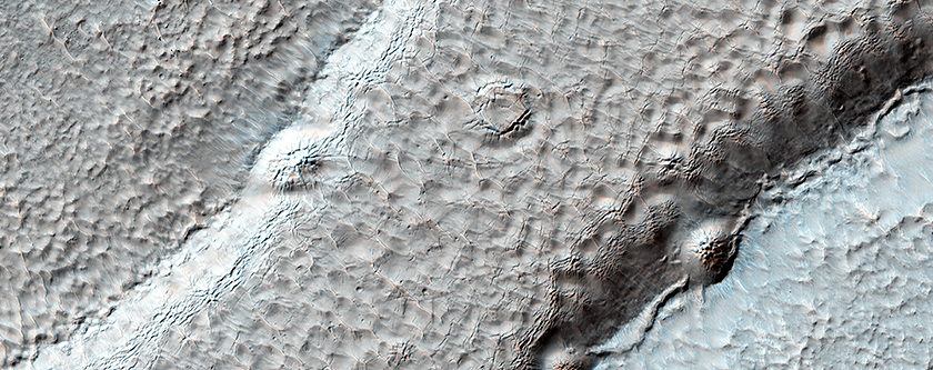 A Textured Mesa